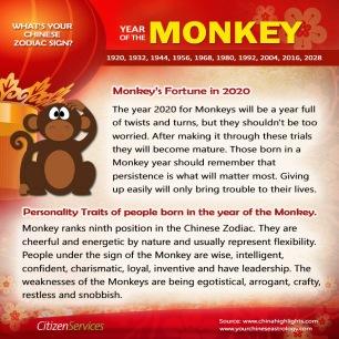 10-monkey