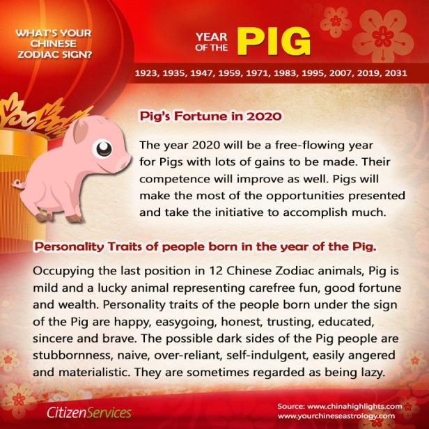 12-pig