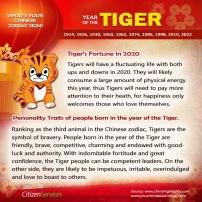 3-tiger