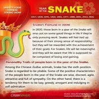 6-snake