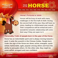 7-horse