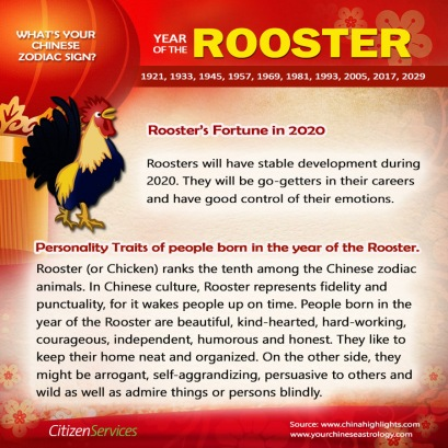 9-rooster